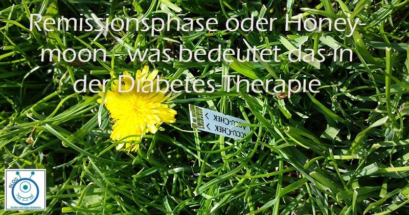 Kinder Diabetes blog remissonsphase