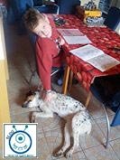 blog Kinder Diabetes Hund ausbildung