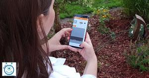 dexcom follow app blog kinder mit typ1 diabetes