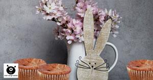 karotten-muffins, rübli-muffins rezept